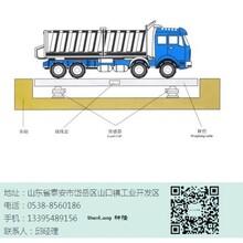 武汉市电子汽车衡一龙8国际娱乐官方网站细节图片