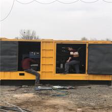 博山区发电机出租800kw供应工程缺电图片