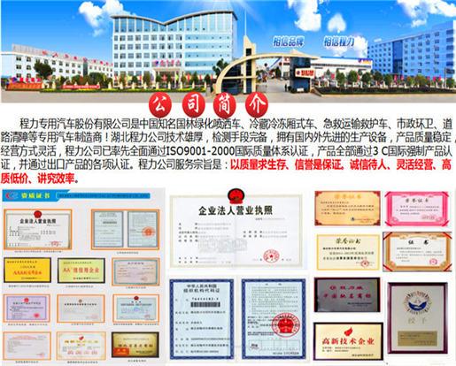 程力专用汽车股份有限公司(随州)
