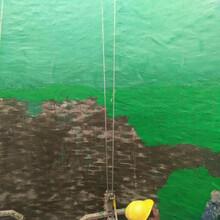 防腐涂料玻璃鳞片胶泥环氧煤沥青漆图片