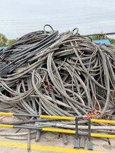 香河电力电缆回收回收公司