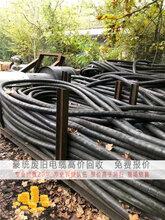 龙山废铜电缆回收现金交易旧铜回收厂家
