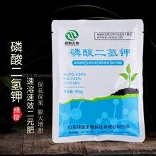 绿陇磷酸二氢钾保花保果膨大增甜图片