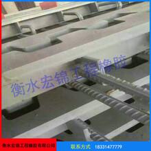 伸縮縫橋梁伸縮縫溫度變形縫廠家圖片