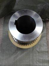 鐘形罩配套尼龍齒式聯軸器聯軸器廠家直銷質量有保障價格合適