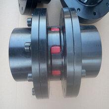 雙法蘭梅花聯軸器伺機聯軸器齒式聯軸器生產廠家直銷