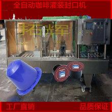 定制粉剂定量灌装封口机全自动咖啡胶囊灌装封口机图片