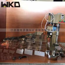 石城實驗多槽浮選設備XFD-12型多槽浮選機連續多槽浮選機圖片