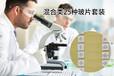 50種混合類動植物觀察玻片中小學套裝顯微鏡觀察載玻片