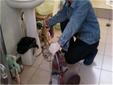 昆山新市家居附近疏通廁所管道聯系方式圖片