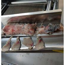 水产品鱼肉斜切片机片鱼机山东富森精工注意事项