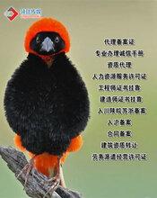 上海建筑资质劳务资质萧房资质转让随时可联系