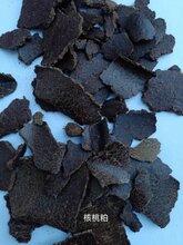 飼料餅粕菜粕圖片