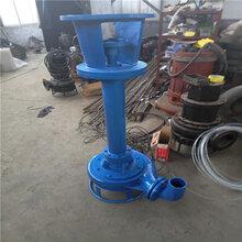 供应立式泥浆泵-高耐磨立式渣浆泵-立式清淤泵厂家图片