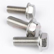 不銹鋼法蘭螺栓/法蘭螺絲供應/法蘭母廠家圖片