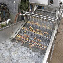 全自动净菜清洗机流水线果蔬加工设备水果药材清洗机图片