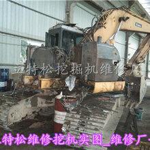 宝兴县卡特挖掘机维修难题强项一立特松专修动作慢