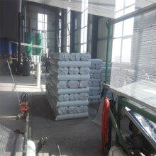 160克耐碱网格布44网格布专业网格布生产厂家图片