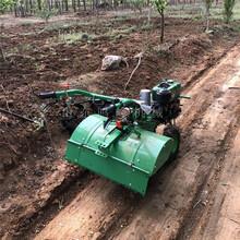 旋地松土园林管理机自走式小型手扶耕地机厂家图片