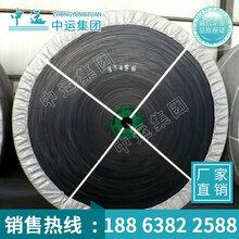 耐酸碱输送带,工业用输送设备,耐腐蚀输送带,输送带厂家价格图片