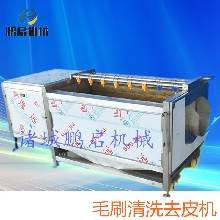 小型鲍鱼壳清洗机鲍鱼清洗设备鲍鱼壳工艺品加工设备