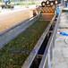 翻浪式果蔬清洗機連續式胡蘿卜清洗流水線廠家定做