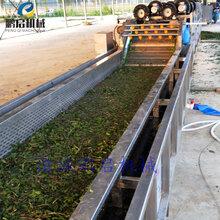 翻浪式果蔬清洗機連續式胡蘿卜清洗流水線廠家定做圖片