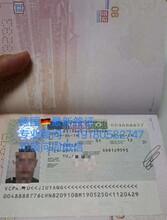 沧州以色列0费用名额有限急招月入3万包吃住图片