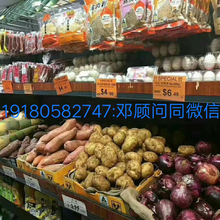 荣昌加拿大出国劳务急招农场采摘工月入3万包吃住图片