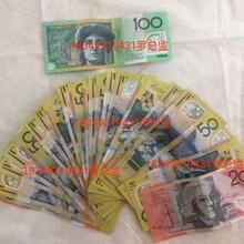 灵寿澳大利亚新西兰出国劳务工作签证急招普工月入3万以上图片