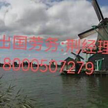 出国劳务澳大利亚招建筑木工瓦工钢筋工水电工图片