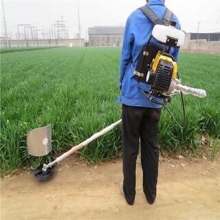 河南割麦机农业机械收割干净图片5