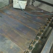 湛江槽式链板输送机耐磨火车站装卸输送机图片