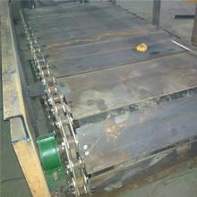 锦州塑料链板输送机各种规格大型链板输送机视频制造厂家图片