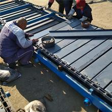 专业订制管链输送机厂家耐高温水平式链板输送机分类出售厂家图片