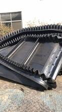 挡边皮带机耐高温耐磨有机肥料装卸输送机图片