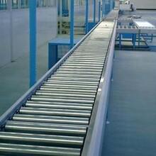 山東輸送帶生產廠家重力輥筒輸送機Ljxy風干金屬網帶輸送圖片