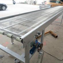丹東金屬網帶輸送機廠家提升爬坡輸送圖片