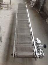 贛州擋板網帶輸送機廠家提升爬坡輸送圖片