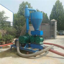 邯鄲現貨氣力吸糧機出售批發大型糧庫專用吸糧機圖片