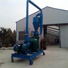 小型抽料機水泥粉氣力吸糧機Ljxy水稻裝車吸糧機圖片