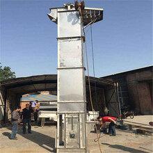 石灰粉密封式斗式輸送機農場散糧食斗式提升機Lj6圖片