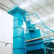 常規塑料斗帶式大米提升機防塵斗式提升機生產廠家圖片