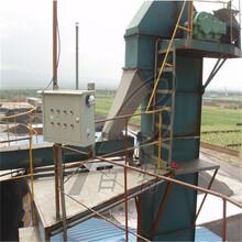 加工鐵料斗斗式提升機廠家推薦礦用斗式提升機報價定制廠家圖片