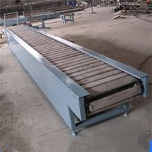 大型鏈板輸送機專業定做廠家推薦金屬鏈板輸送機生產規格出售廠家圖片