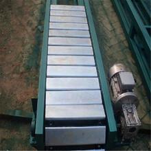 鏈板運輸機槽鋼板鏈輸送機圣興電子柔性鏈板輸送機圖片