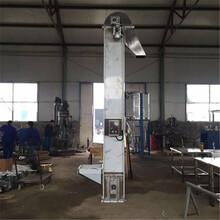 碳鋼瓦斗板鏈提升機瓜子斗提機六九重工優質垂直提升機廠家圖片