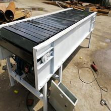 柔性鏈板機鏈板爬坡輸送機圣興電子鏈板輸送機型號圖片