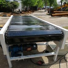绞龙链板输送机优质链板机Ljxy水平式链板输送机分类出图片
