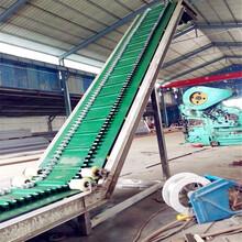 大倾角波纹挡边输送带行走式专用防滑输送机图片